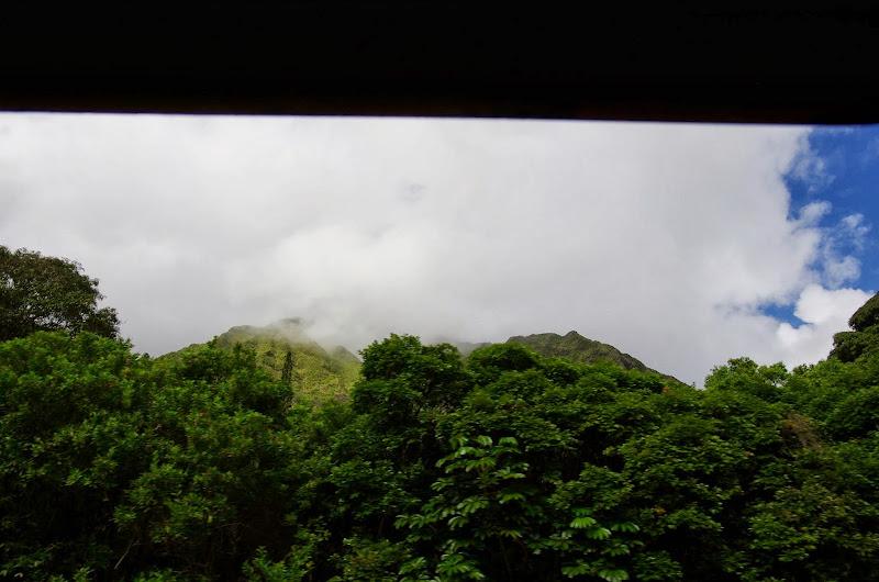 06-18-13 Waikiki, Coconut Island, Kaneohe Bay - IMGP6988.JPG