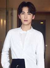 Li Haonan China Actor