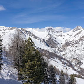 Livigno, Lombardy, Italy by Serguei Ouklonski - Landscapes Mountains & Hills ( white color, mountain, wood, no person, tranquil scene, frost, frozen, landscape, sky, cloud - sky, nature, tree, cold, pine tree, no people, ice, snow, cold temperature, weather, snowcapped mountain, italy, lombardy, scenics, beauty in nature, sunlight, winter, season, mountain range, color, outdoors, branch, tranquility, day )