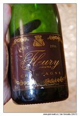 Fleury-1996