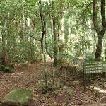 Sign near Bola Creek Picnic area (112225)