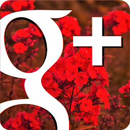 Google+ Helper
