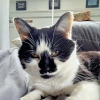 Doug Peabody
