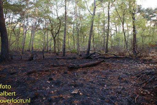 nacontrole  bosbrand Overloon 18-04-2014 (3).jpg