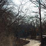 01-05-13 Arbor Hills Nature Preserve - IMGP3942.JPG