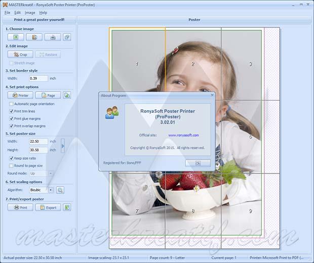 RonyaSoft Poster Printer (ProPoster) 3.02