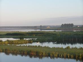 Photo: Natuurgebied Swaen aan het Spui