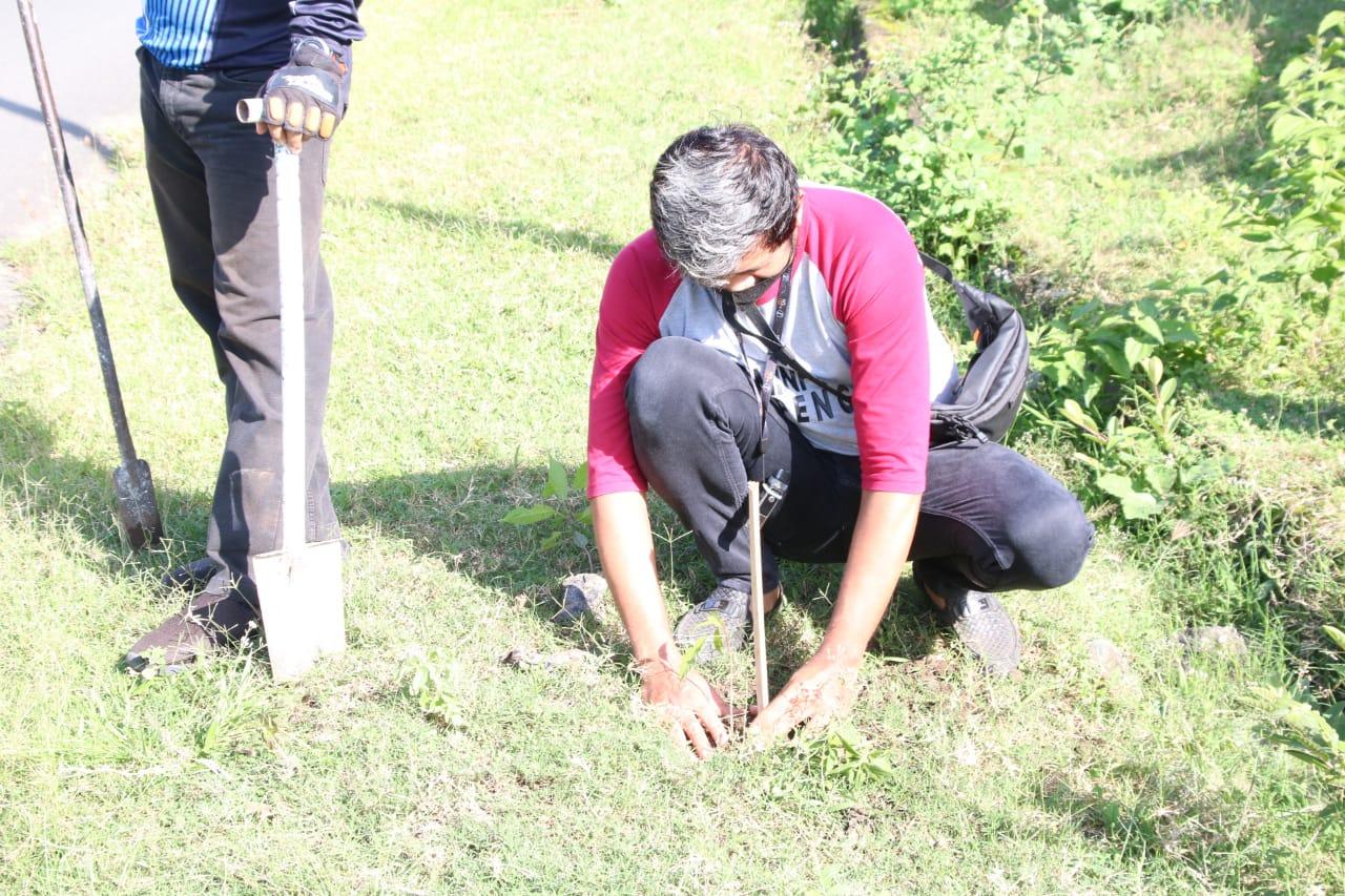 Pemkab Soppeng Peringati Hari Lingkungan Hidup Dengan Tanam Pohon