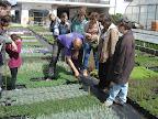 Rémy Abbt (Roussillon fleurs) nous aide à choisir les plantes