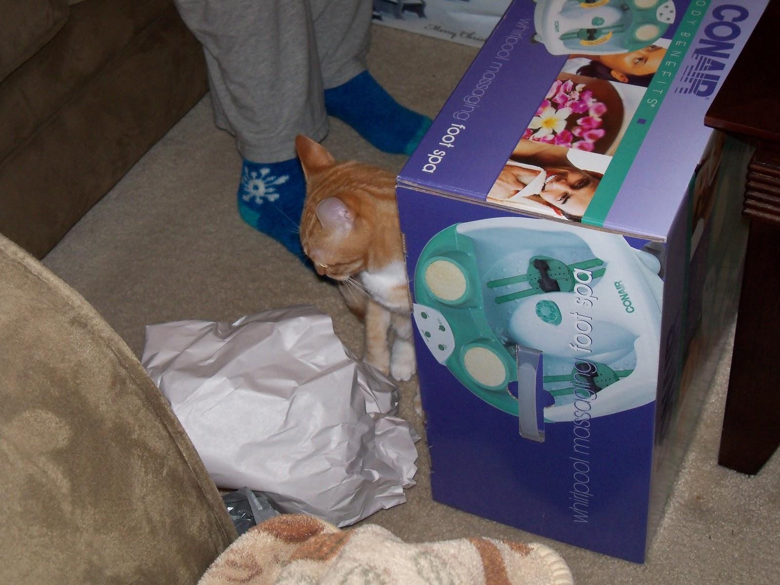 Christmas 2010 - 100_6447.JPG