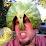 B. Jason Ouellette's profile photo