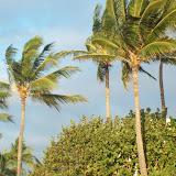 Hawaii Day 6 - 114_1828.JPG