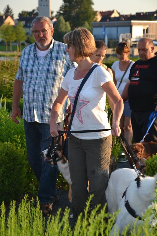 On Tour in Tirschenreuth: 30. Juni 2015 - DSC_0115.JPG