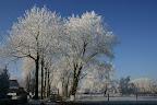 wintersteegeindstraatkarinenrene.jpg