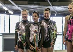 Han Balk Fantastic Gymnastics 2015-2804.jpg