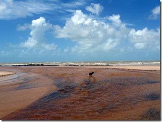 praia-da-paixao-prado-bahia-1