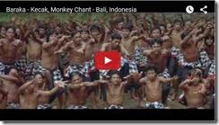 monkey chant