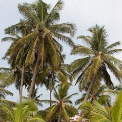 SriLanka_002
