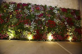 mur végétal en grèce portes palace hotel prés d olympe