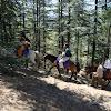 Horse ride at Naldehra.jpg