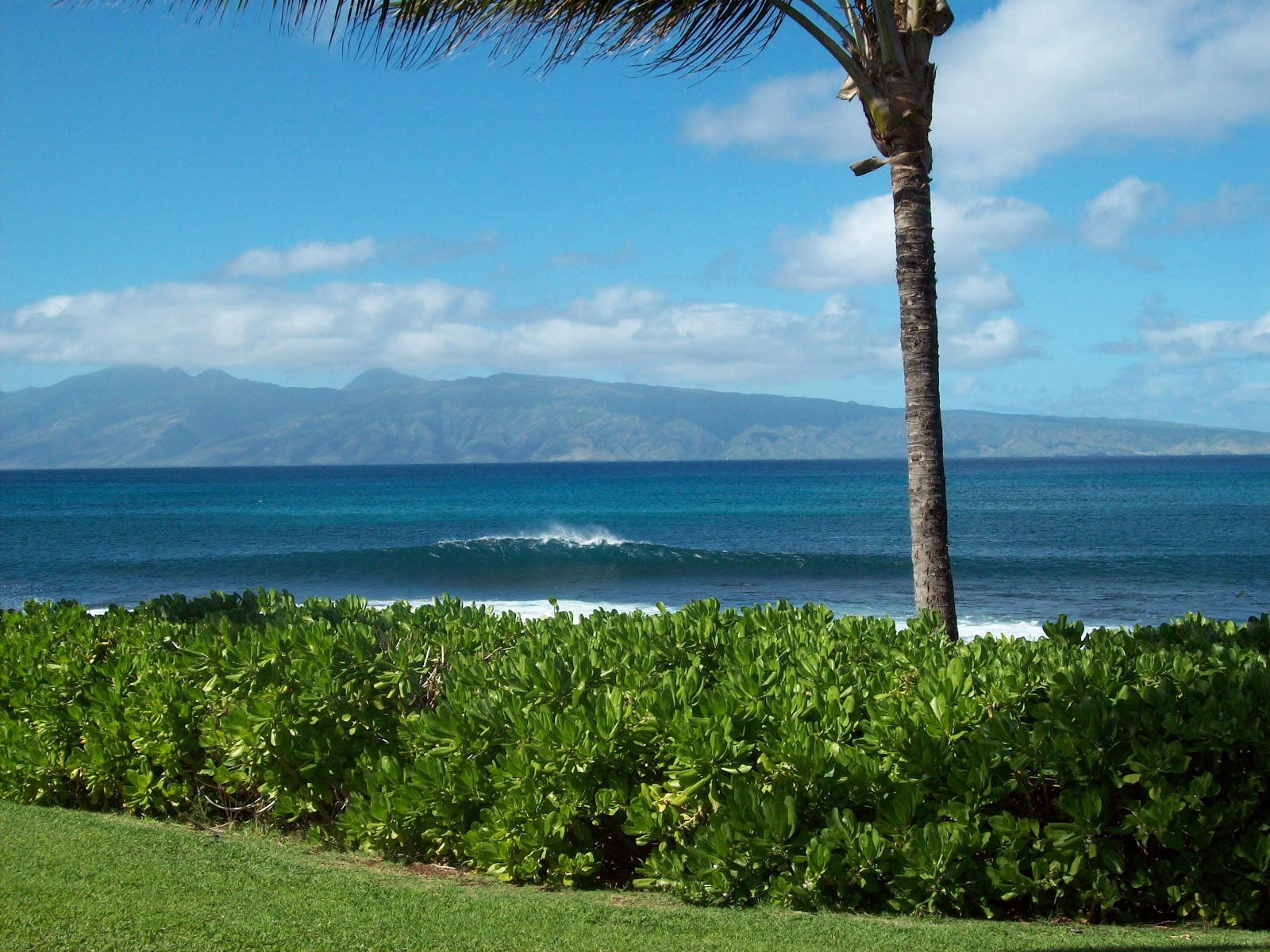 Hawaii Day 6 - 114_1788.JPG
