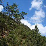Campaments amb Lola Anglada 2005 - CIMG0355.JPG