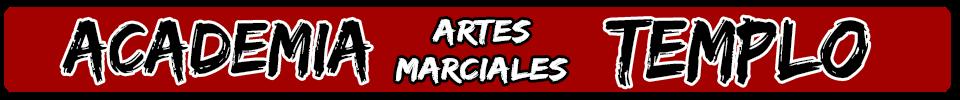 ACADEMIA ARTES MARCIALES ALICANTE