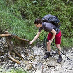 Wanderung Tschafon 23.06.17-8973.jpg