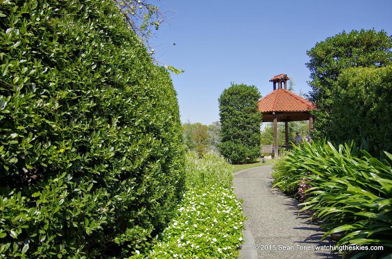 10-26-14 Dallas Arboretum - _IGP4315.JPG
