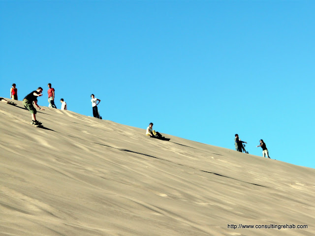 These people made sand boarding look very difficult