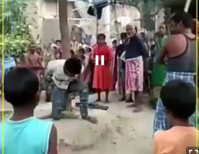 उत्तर प्रदेश : प्रेमिका से मिलने पहुंचा पेर्मी को पेड़ बाँध कर बुरी तरह पीटा, वीडियो हुआ वायरल