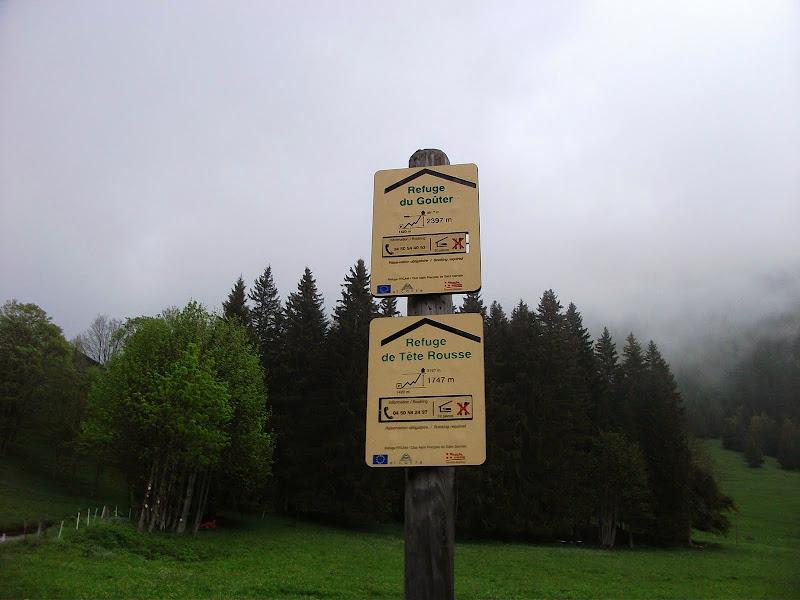 Медвежьи бродилки по Центральной Европе (Германия, БеНиЛюкс, Франция, Швейцария, Италия)