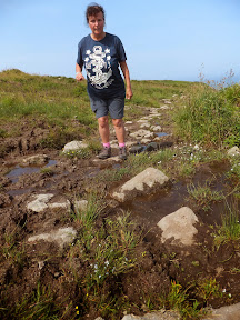 Stepping stones across the boggy ground above Morvah cliff