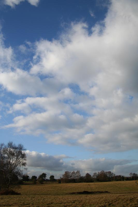 08 banstead heath sky