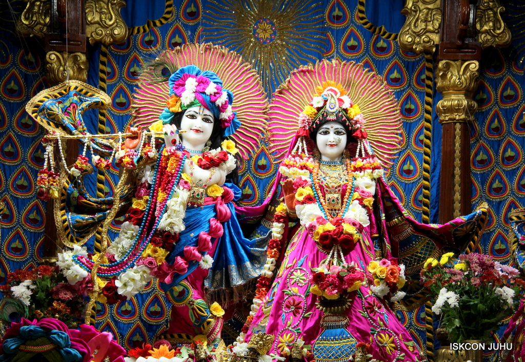 ISKCON Juhu Sringar Deity Darshan on 2nd Oct 2016 (2)