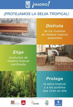 Promoción de la madera tropical sostenible
