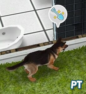 Sims FreePlay basements pet treasure