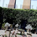 ogrody w Palacio de Viana, Kordoba