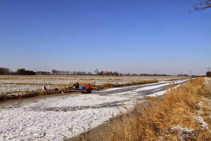 Winter - Winter-078.jpg