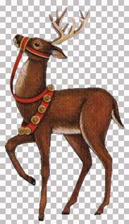 Reindeer_LDM.jpg