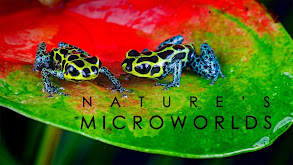 Nature's Microworlds thumbnail
