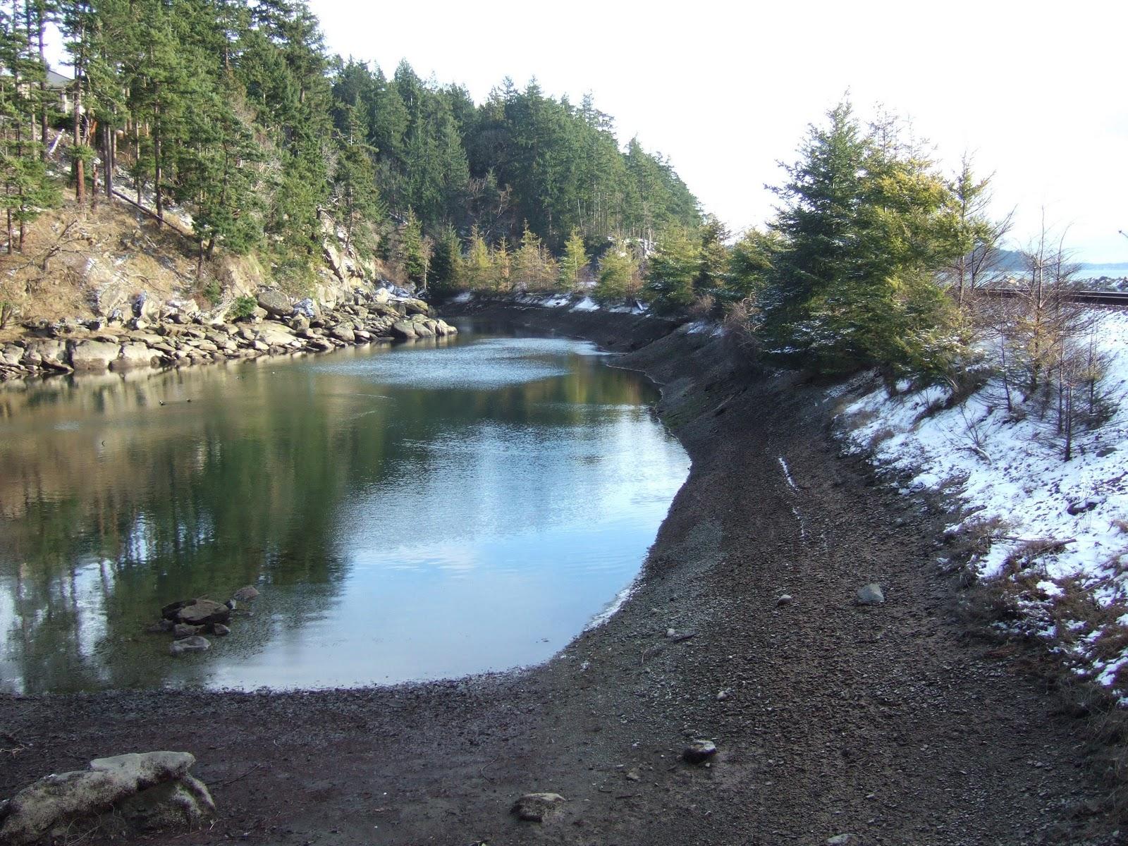 Reading the Washington Landscape: February 2011