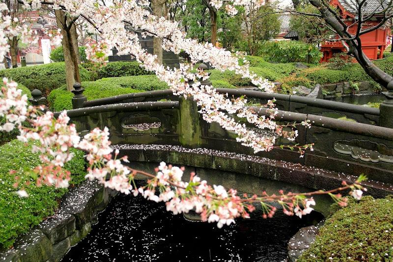 2014 Japan - Dag 5 - janita-SAM_5967.JPG