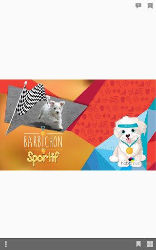 Barbichon Sportif - Habib