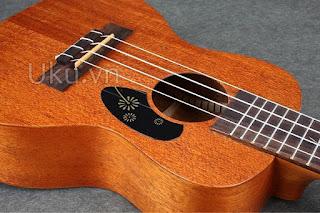 chống xước ukulele