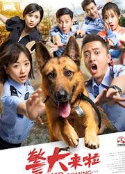 K9 Coming China Drama