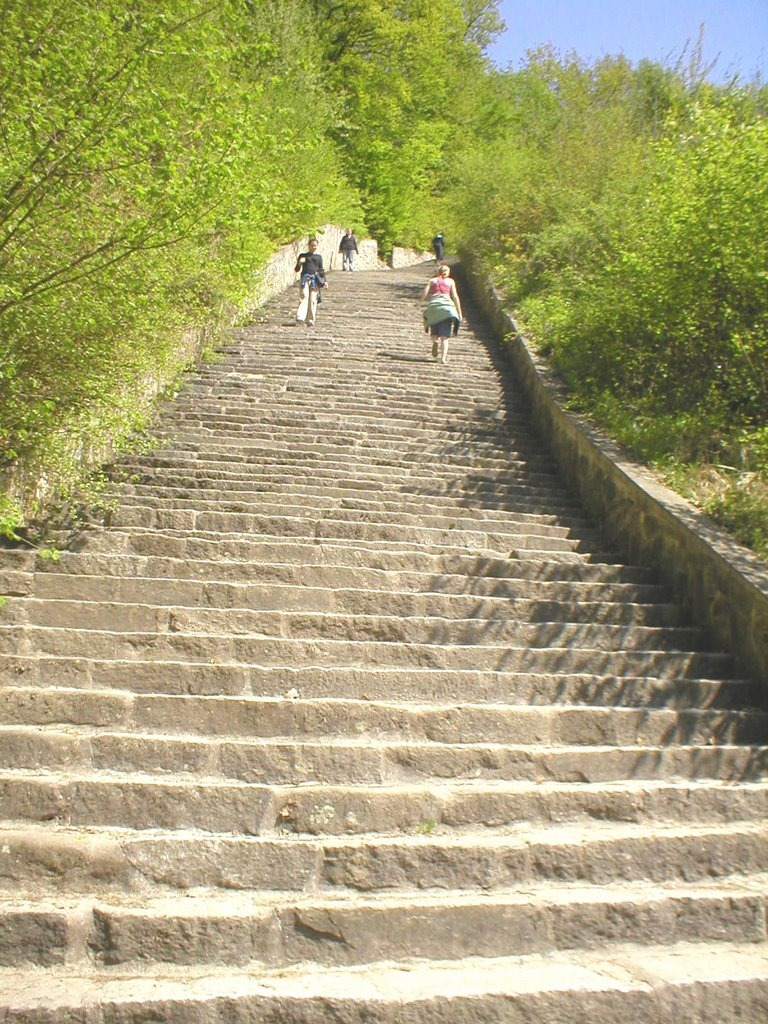 mauthausen-stairs-of-death-8