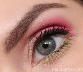 c_FlamingoParkEyeShadowX9Palette11 (2)