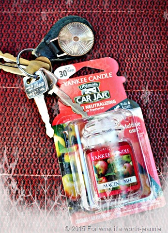 Yankee Candle car care air freshener snow