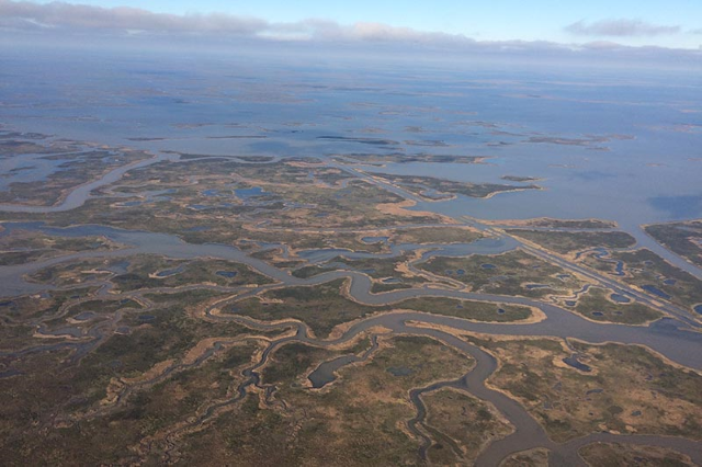 Fifth-year PhD student at Tulane University, Molly Keogh, shot this photo near Bohemia, looking northeast over the marshes of Breton Sound in southeastern Louisiana. Photo: Molly Keogh